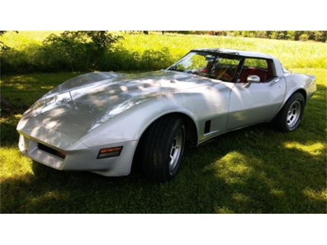 1980 Chevrolet Corvette (CC-1152455) for sale in Cadillac, Michigan