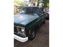 1979 Chevrolet C10 (CC-1152500) for sale in Cadillac, Michigan