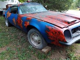 1975 Pontiac Firebird (CC-1152539) for sale in Cadillac, Michigan