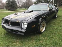 1976 Pontiac Firebird Trans Am (CC-1156482) for sale in Cadillac, Michigan