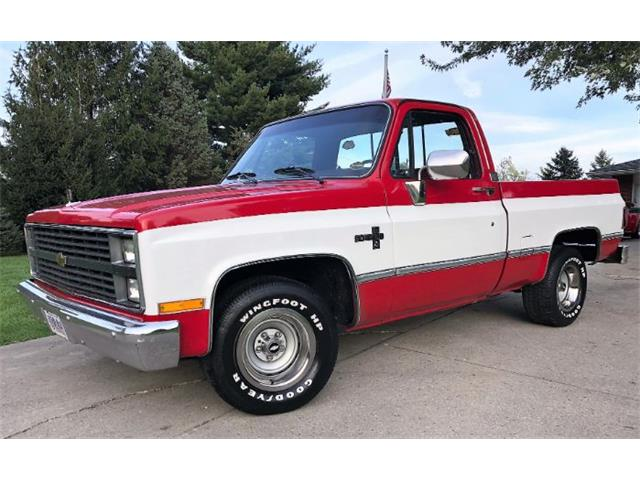 1984 Chevrolet C10 (CC-1156483) for sale in Cadillac, Michigan