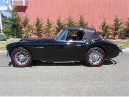 1966 Austin-Healey 3000 (CC-1156771) for sale in Cadillac, Michigan