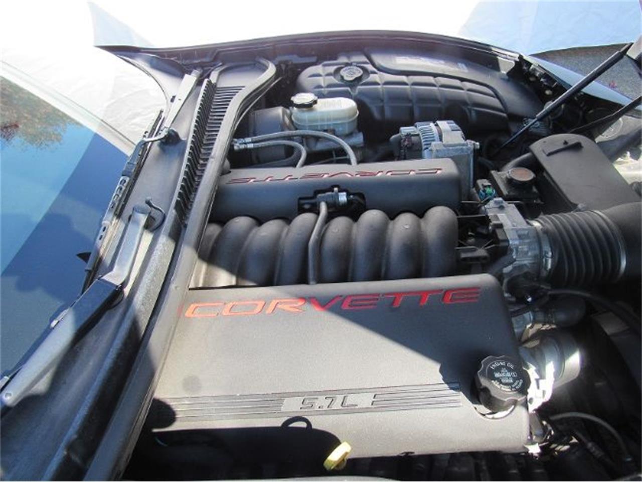 1998 Chevrolet Corvette (CC-1156835) for sale in Cadillac, Michigan