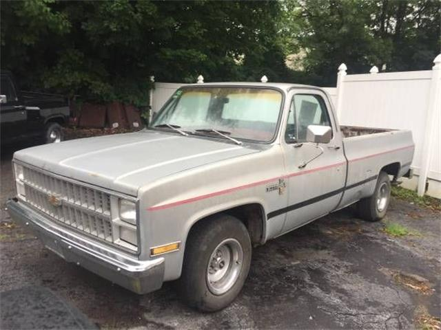 1983 Chevrolet C10 (CC-1161036) for sale in Cadillac, Michigan