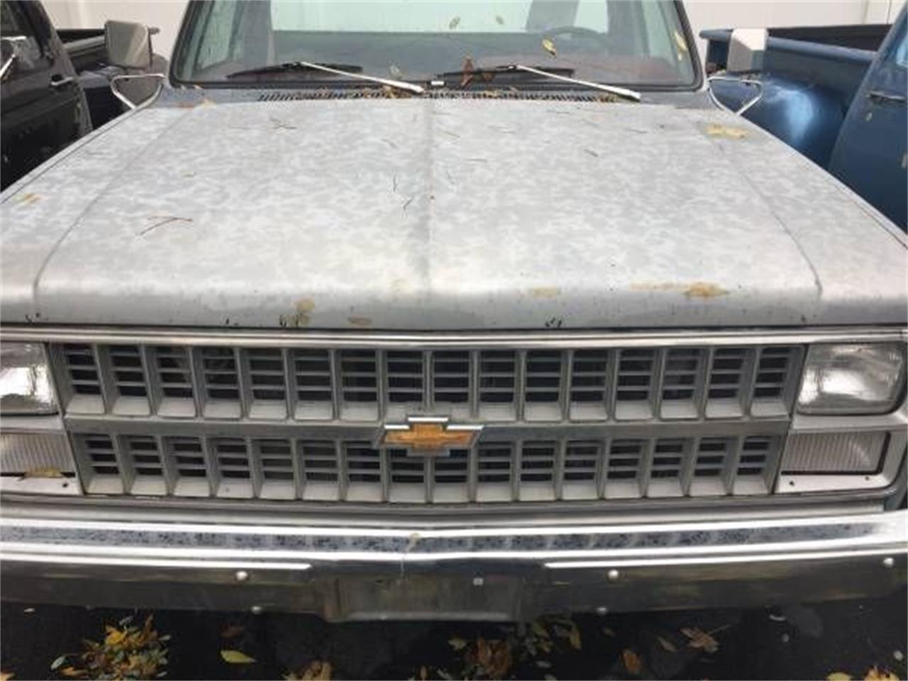 1983 Chevrolet C10 (CC-1161036) for sale in Cadillac, Michigan