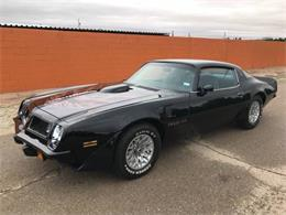 1975 Pontiac Firebird Trans Am (CC-1161040) for sale in Cadillac, Michigan