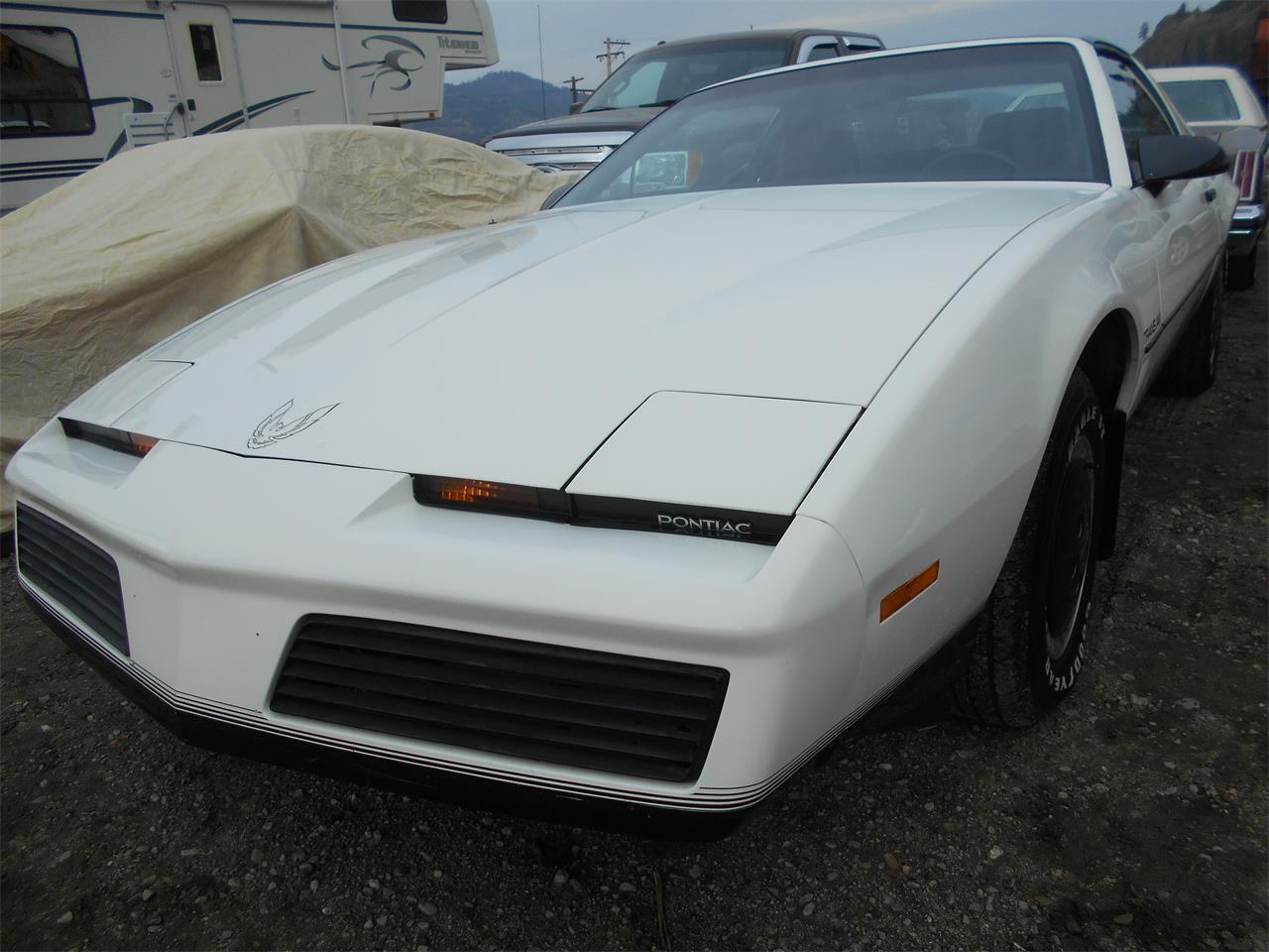The Best 1982 Trans Am For Sale