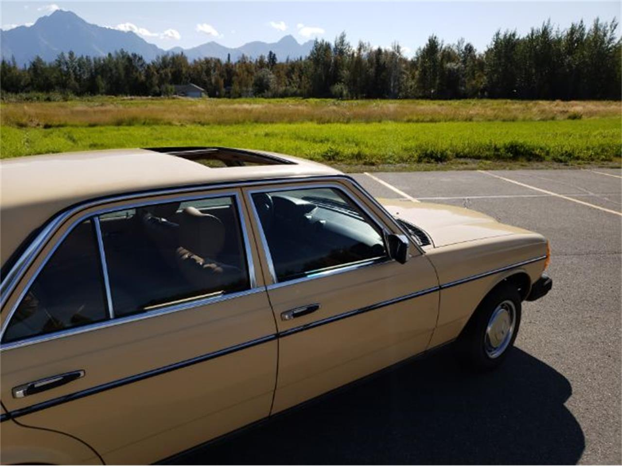 1983 Mercedes-Benz 240D (CC-1163667) for sale in Cadillac, Michigan