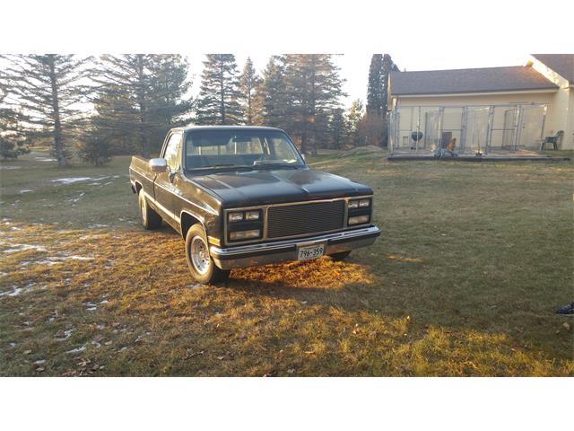 1985 Chevrolet C10 (CC-1163934) for sale in Andover, Minnesota