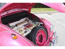 1967 Volkswagen Beetle (CC-1164258) for sale in Sarasota, Florida
