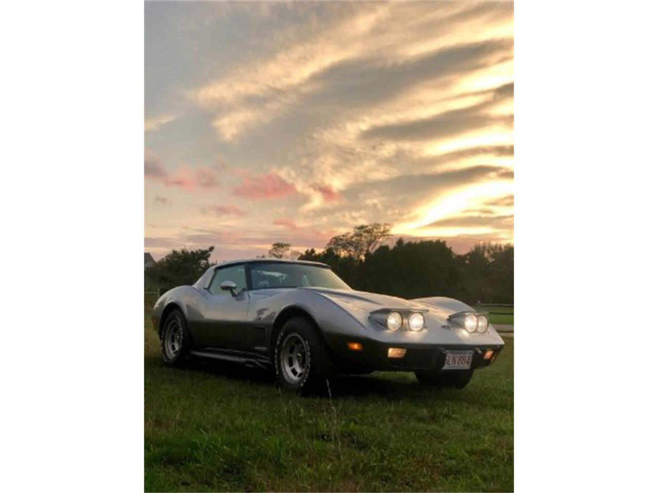 1978 Chevrolet Corvette (CC-1164730) for sale in Cadillac, Michigan
