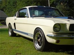 1965 Shelby GT350 (CC-1166114) for sale in East Longmeadow, Massachusetts
