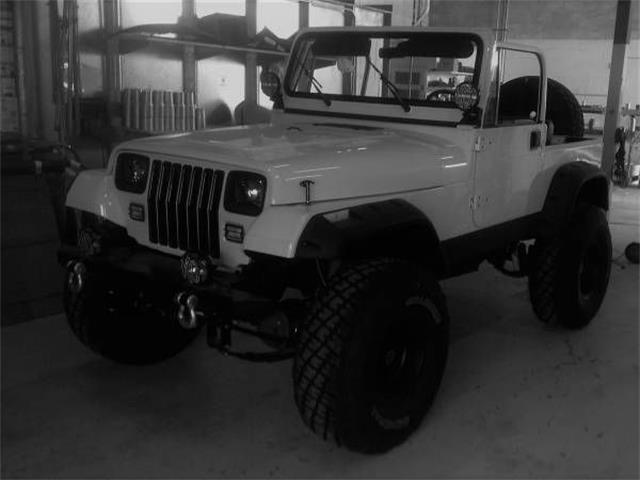 1995 Jeep Wrangler (CC-1167659) for sale in Cadillac, Michigan