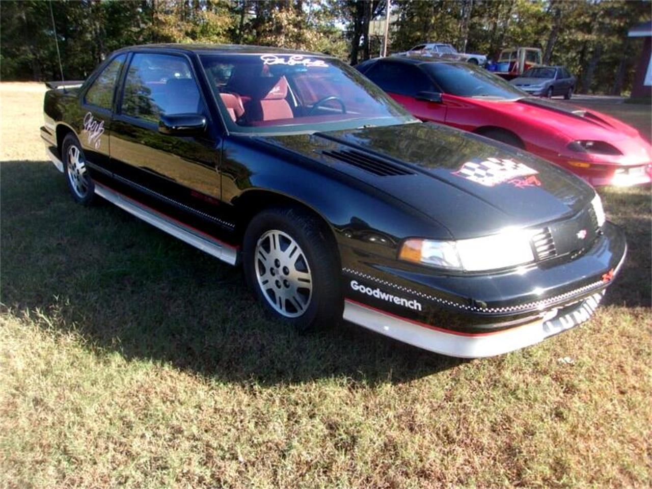 1991 Chevrolet Lumina (CC-1168768) for sale in Gray Court, South Carolina