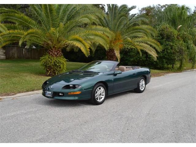 1995 Chevrolet Camaro (CC-1169102) for sale in Clearwater, Florida