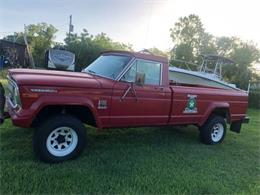 1973 Jeep Pickup (CC-1171880) for sale in Cadillac, Michigan