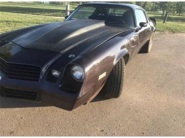 1980 Chevrolet Camaro (CC-1171895) for sale in Cadillac, Michigan