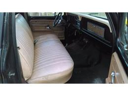 1978 Ford F100 (CC-1172017) for sale in Cadillac, Michigan
