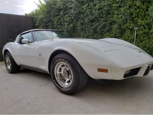 1979 Chevrolet Corvette (CC-1172027) for sale in Cadillac, Michigan