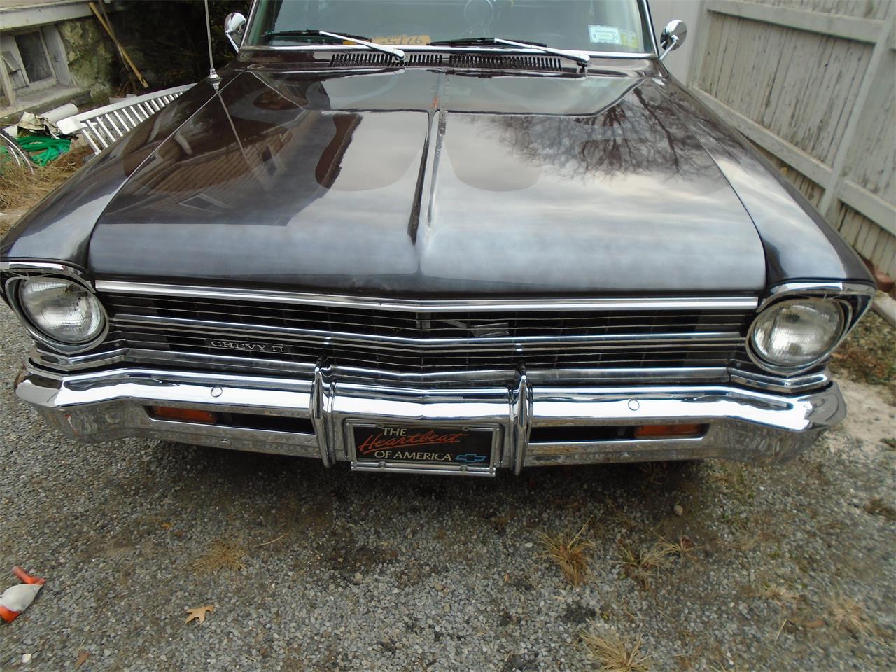 1967 Chevrolet Nova (CC-1172833) for sale in Port Chester, New York