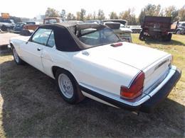1990 Jaguar XJS (CC-1176693) for sale in Cadillac, Michigan