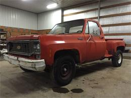 1974 Chevrolet C20 (CC-1178191) for sale in Cadillac, Michigan