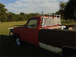 1973 Chevrolet C20 (CC-1178196) for sale in Cadillac, Michigan
