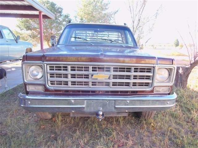 1977 Chevrolet C20 (CC-1178209) for sale in Cadillac, Michigan