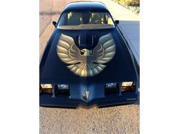 1979 Pontiac Firebird Trans Am (CC-1179640) for sale in Cadillac, Michigan