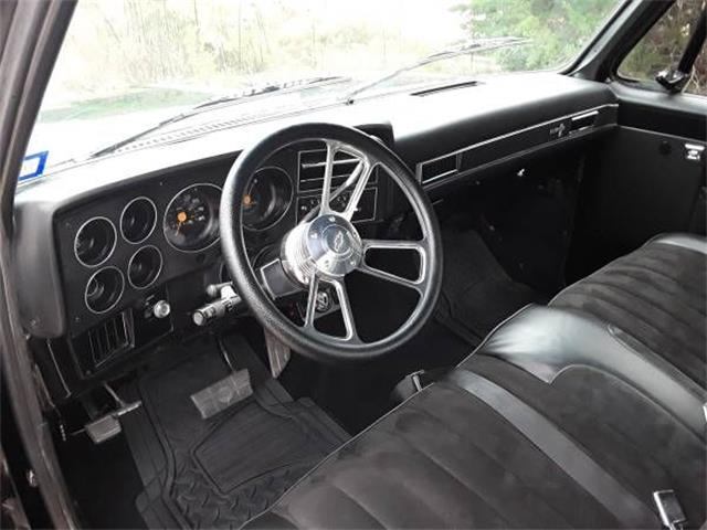 1987 Chevrolet Custom (CC-1181055) for sale in Cadillac, Michigan