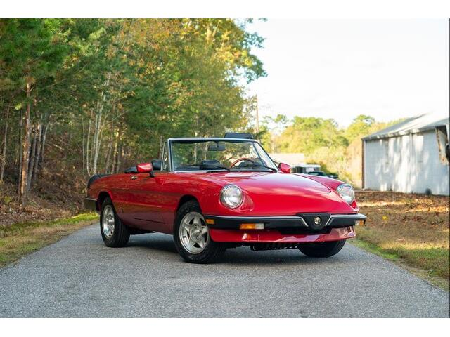 1985 Alfa Romeo Spider (CC-1185913) for sale in Hickory, North Carolina