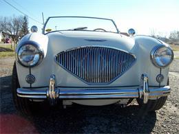 1956 Austin-Healey 100-4 BN2 (CC-1186213) for sale in medina, Ohio