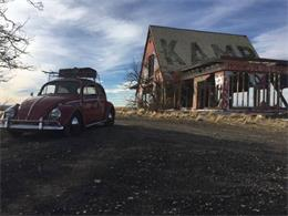 1964 Volkswagen Beetle (CC-1180641) for sale in Cadillac, Michigan