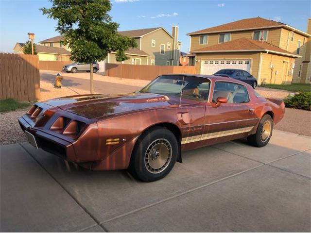 1980 Pontiac Firebird (CC-1180646) for sale in Cadillac, Michigan