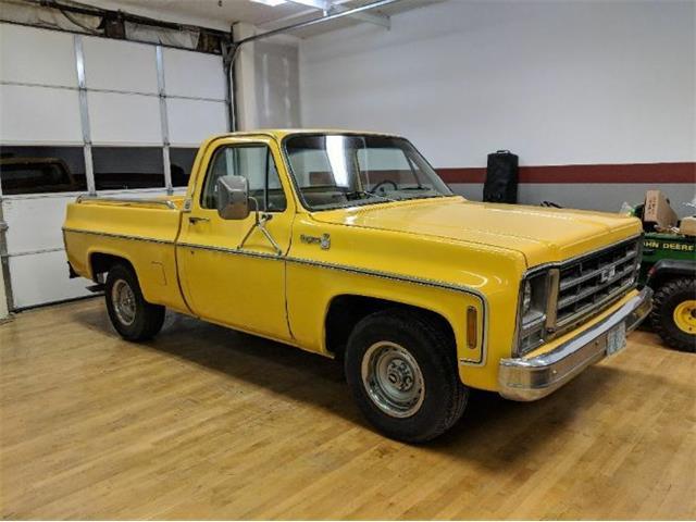 1979 Chevrolet C10 (CC-1187507) for sale in Cadillac, Michigan