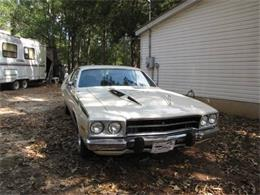 1974 Plymouth Road Runner (CC-1189106) for sale in Cadillac, Michigan