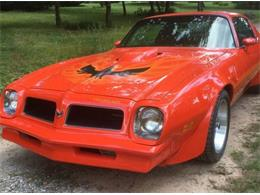 1976 Pontiac Firebird Trans Am (CC-1189120) for sale in Cadillac, Michigan