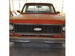 1977 Chevrolet C10 (CC-1189126) for sale in Cadillac, Michigan