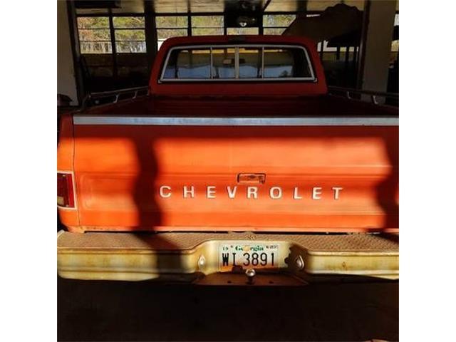 1977 Chevrolet C10 (CC-1189126) for sale in Cadillac, Michigan