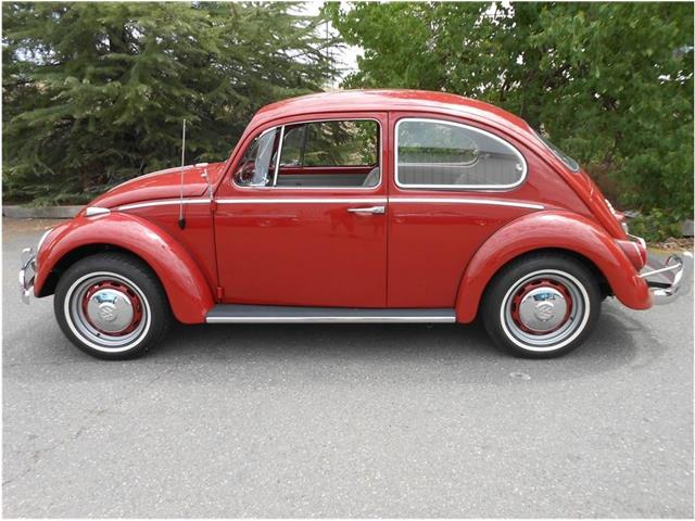 1966 Volkswagen Beetle (CC-1189868) for sale in Roseville, California