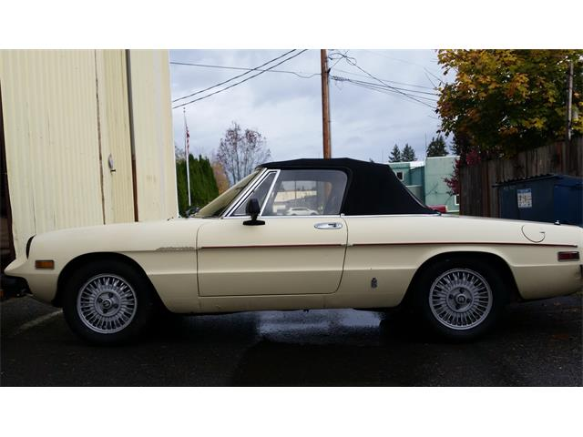 1981 Alfa Romeo Spider Quadrifoglio (CC-1191925) for sale in Carnation, Washington