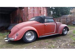 1962 Volkswagen Beetle (CC-1191946) for sale in Carnation, Washington