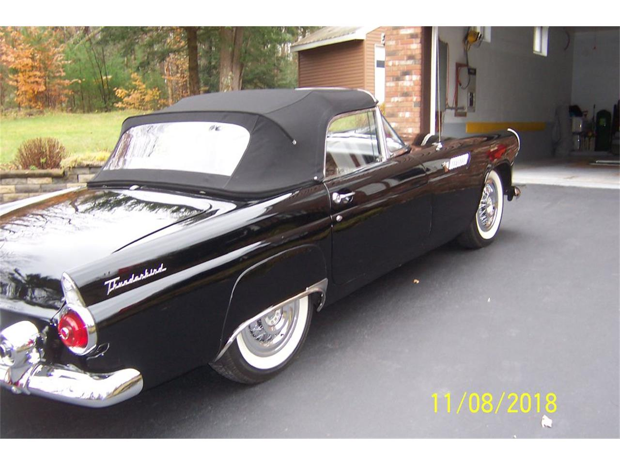 1955 Ford Thunderbird (CC-1193408) for sale in West Pittston, Pennsylvania