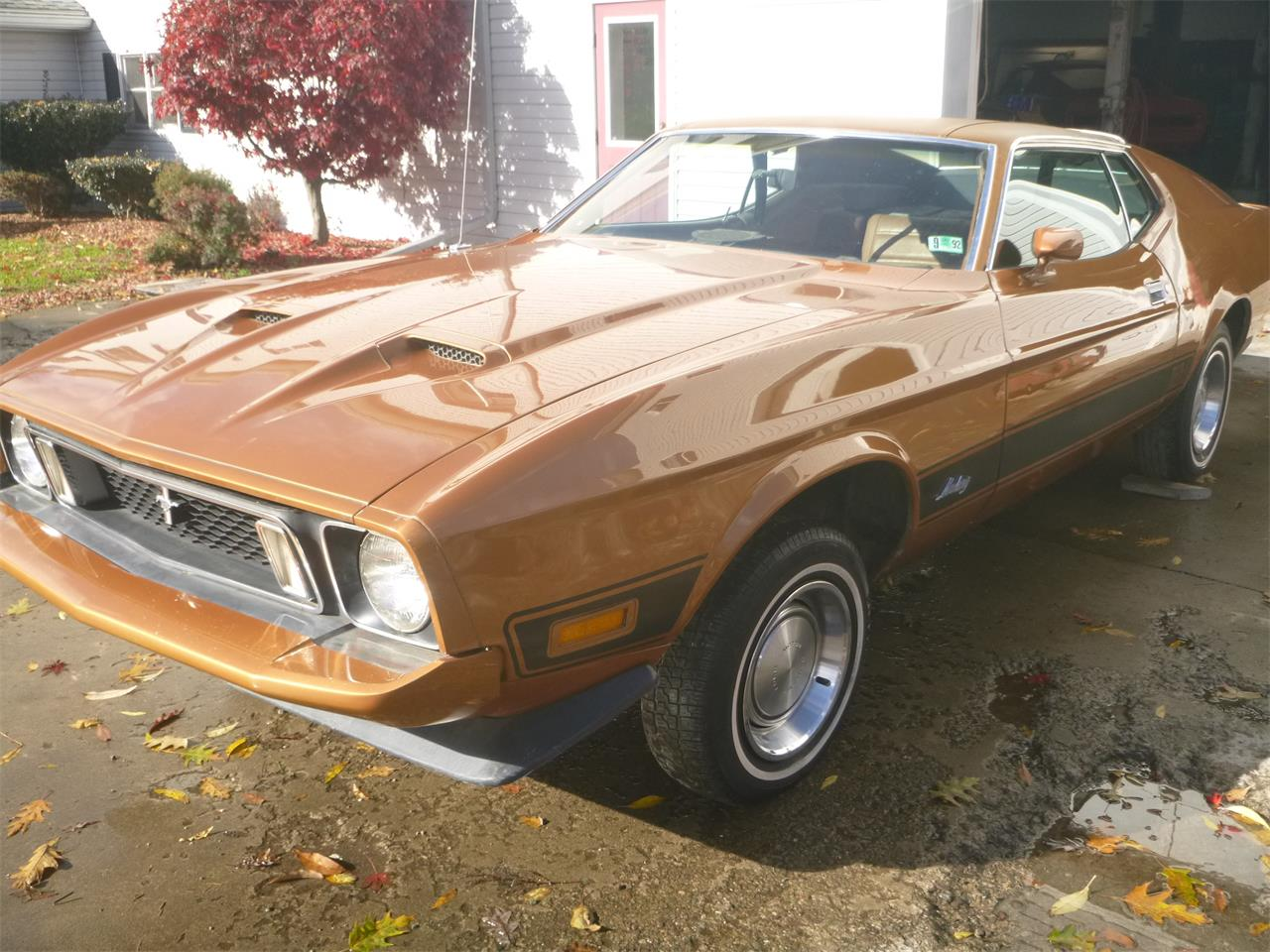 1973 Ford Mustang (CC-1194220) for sale in Shickshinny, Pennsylvania