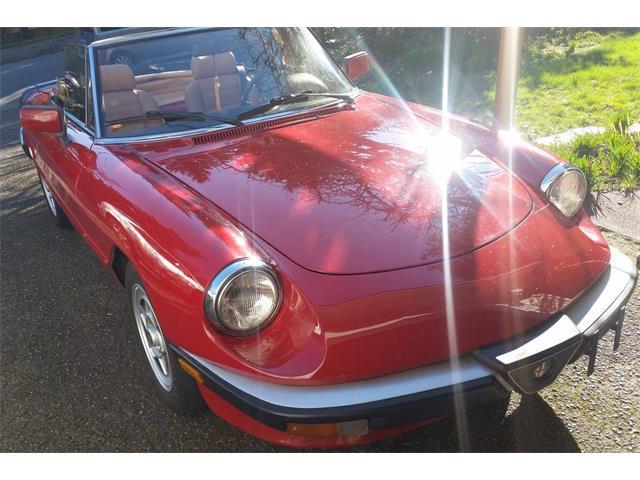 1986 Alfa Romeo Spider Veloce (CC-1190461) for sale in Carnation, Washington