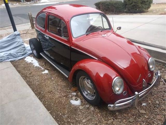 1967 Volkswagen Beetle (CC-1194963) for sale in Cadillac, Michigan