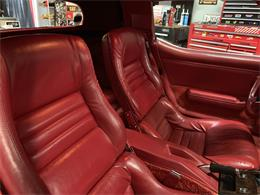 1981 Phillips Berlina (CC-1195076) for sale in Franklin Park, Illinois