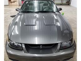 2003 Ford Mustang Cobra (CC-1195549) for sale in Breckenridge, Minnesota