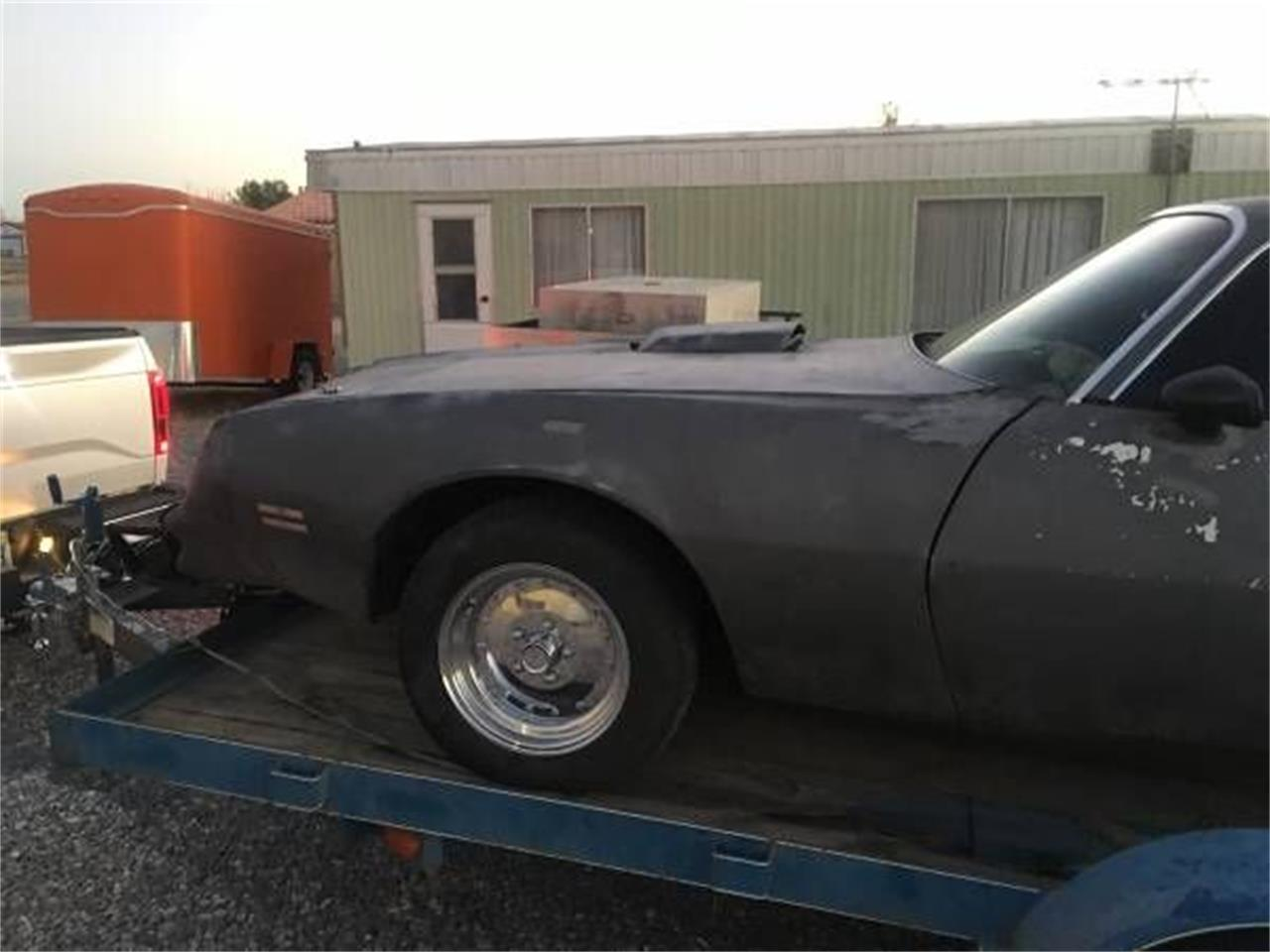 1976 Pontiac Firebird (CC-1196576) for sale in Cadillac, Michigan