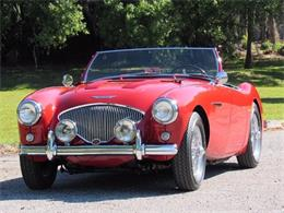 1955 Austin-Healey 100-4 (CC-1196669) for sale in Delray Beach, Florida